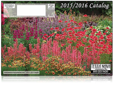 View Our 2015/2016 Catalog - Click Here