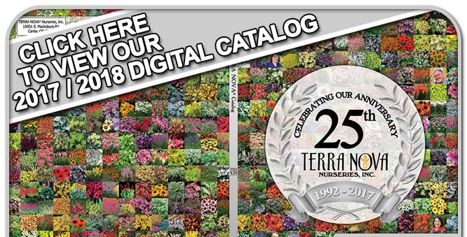 Click Here to View Our 2015/2016 Catalog