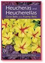 Heucheras & Heucherellas