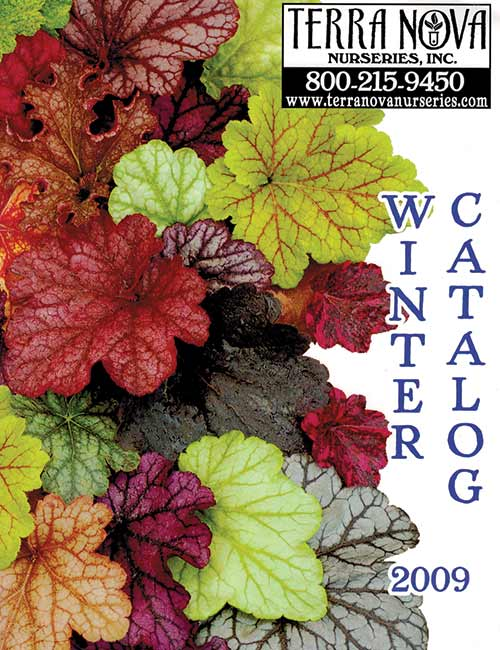 2009 Winter Catalog