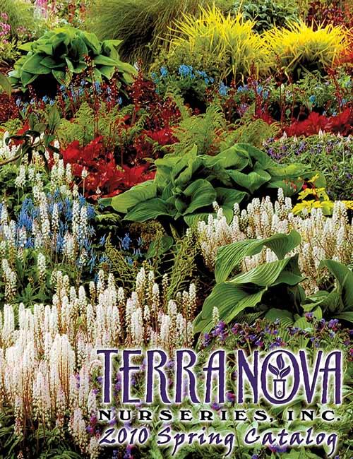 2010 Spring Catalog
