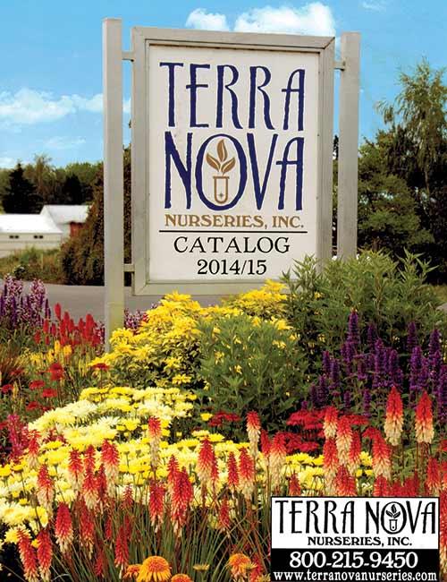 2014 / 2015 Catalog
