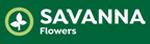 Savanna Flowers