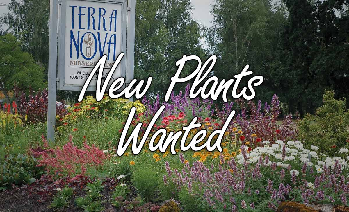 New Plants Wanted